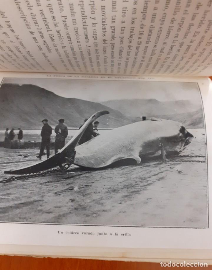 Libros antiguos: Aventuras, inventos y mixtificaciones de Silvestre Paradox Pio Baroja 1930 - Foto 4 - 208397913