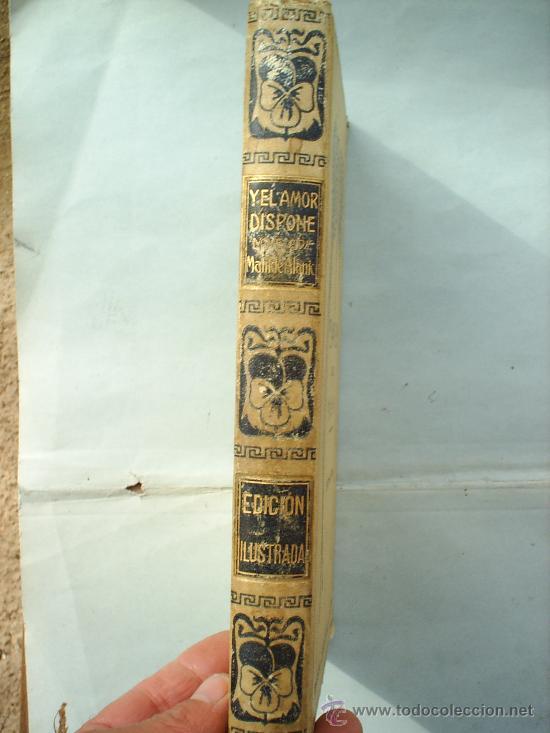 Libros antiguos: Y EL AMOR DISPONE -1912 -MATILDE ALANIC-ILUSTRACION MAS Y FONDEVILA MONTANER Y SIMON - Foto 2 - 23197681