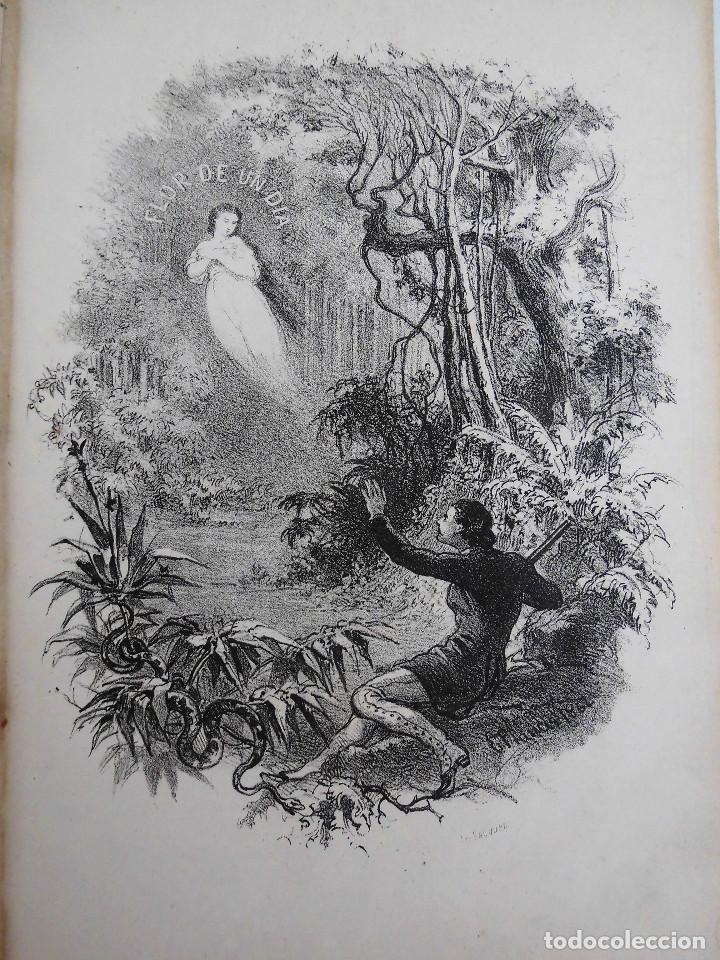 Libros antiguos: ¡FLOR DE UN DÍA! - NOVELA, LIBRO OBRA DE MANUEL ANGELON (1862) - INCLUYE 8 LÁMINAS - Foto 2 - 76764023