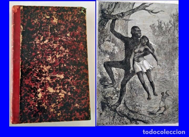 ÁFRICA MISTERIOSA. GRAN LIBRO ILUSTRADO DEL SIGLO XIX. (Libros antiguos (hasta 1936), raros y curiosos - Literatura - Terror, Misterio y Policíaco)