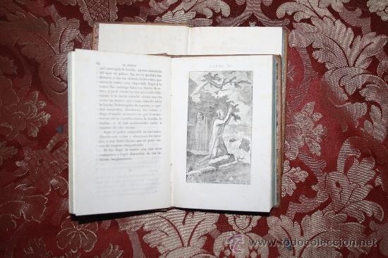 Libros antiguos: 5888- EL NUEVO ROBINSON. SR. CAMPE. IMP ANTONIO SIERRA. 2 TOMOS. 1841 - Foto 3 - 35005310