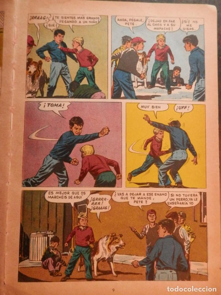 Libros antiguos: LASSIE EDICIONES LAIDA 1967 - Foto 3 - 160700686