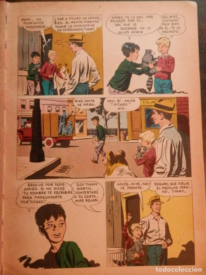 Libros antiguos: LASSIE EDICIONES LAIDA 1967 - Foto 4 - 160700686