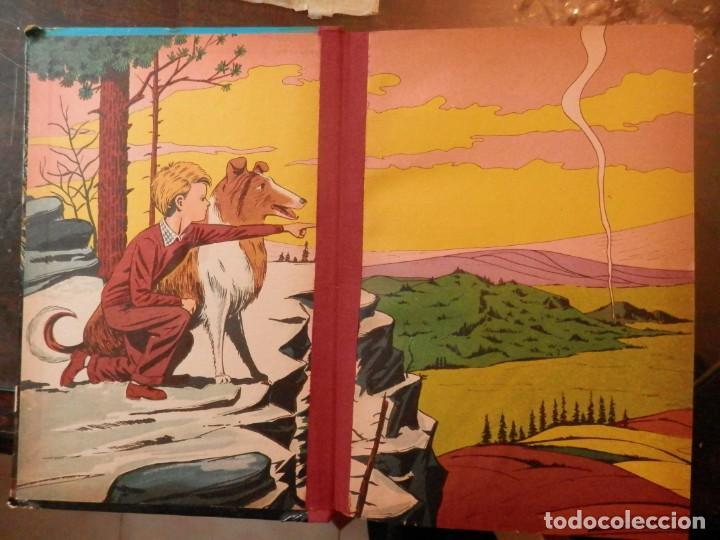 Libros antiguos: LASSIE EDICIONES LAIDA 1967 - Foto 5 - 160700686