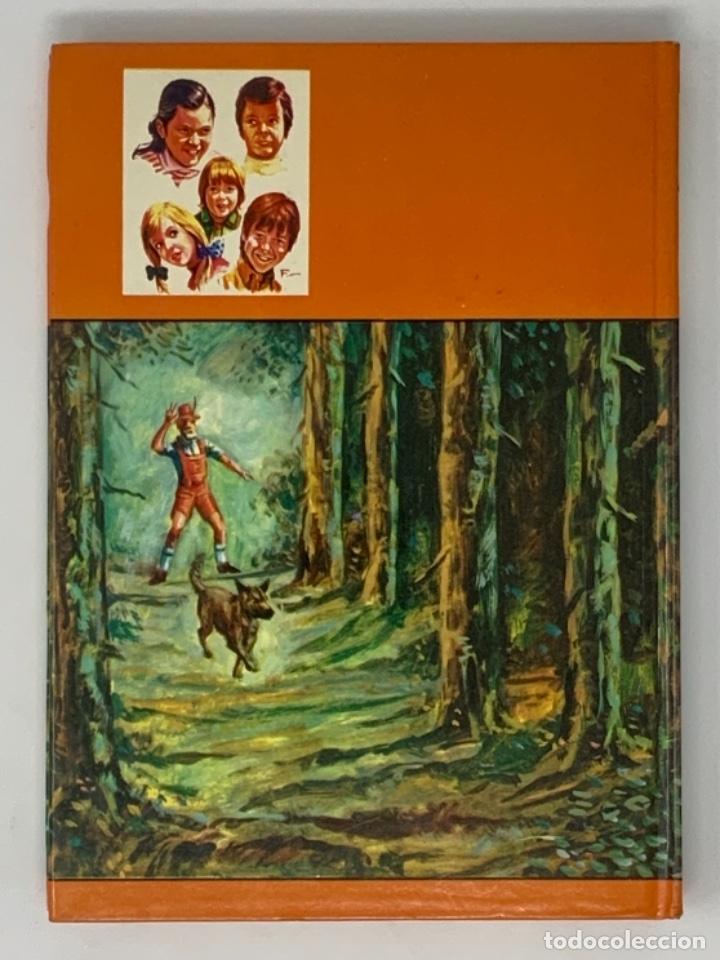 Libros antiguos: LOS HOLLISTER Nº 13. 6ª EDICIÓN AÑO 1978 - Foto 3 - 174465888
