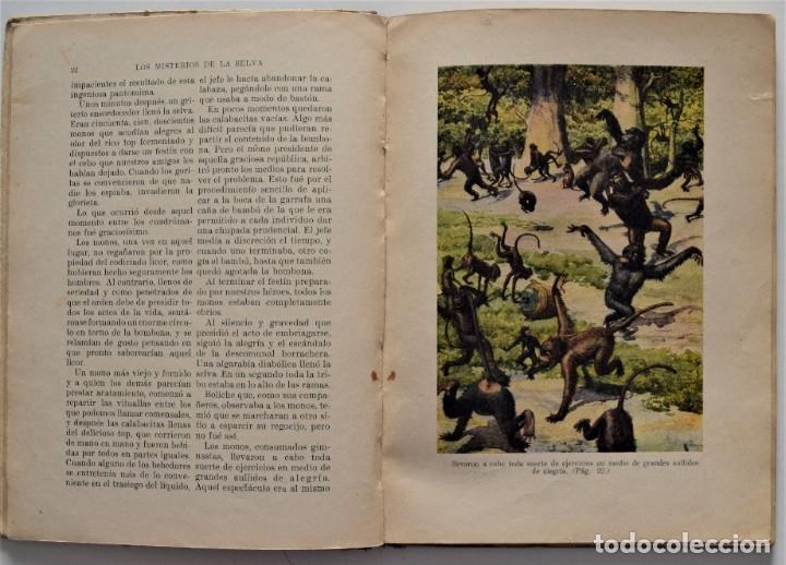 Libros antiguos: LOS MISTERIOS DE LA SELVA, VIAJES FANTÁSTICOS DE PIRULETE - FEDERICO TRUJILLO - RAMÓN SOPENA 1922 - Foto 4 - 176906075