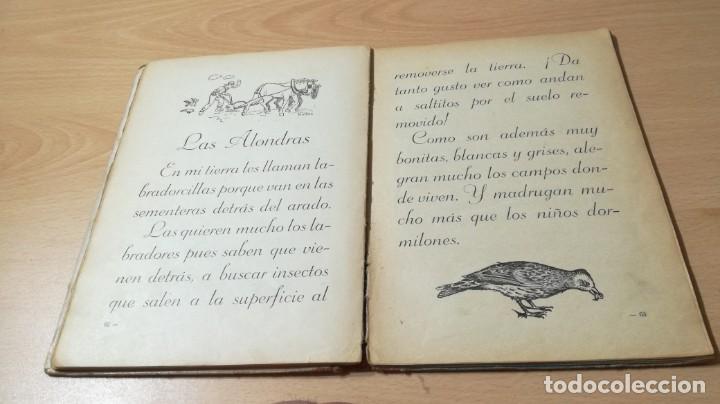 Libros antiguos: MIS AMIGOS LOS ANIMALES - CONCEPCION S AMOR - 1934 GRAFICA PREDILECTA CORNELLA / M102 - Foto 12 - 189460570