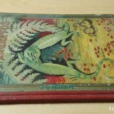 Libros antiguos: LOS TRES LAGARTOS - MANUEL MARINEL - LO DIBUJOS RICARDO OPISSO 1918 SUC BLAS CAMI BARCELONA / M102. Lote 189460605