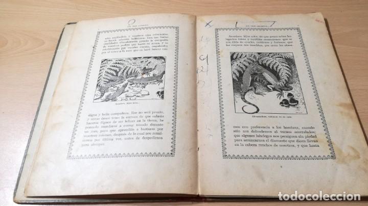 Libros antiguos: LOS TRES LAGARTOS - MANUEL MARINEL - LO DIBUJOS RICARDO OPISSO 1918 SUC BLAS CAMI BARCELONA / M102 - Foto 12 - 189460605
