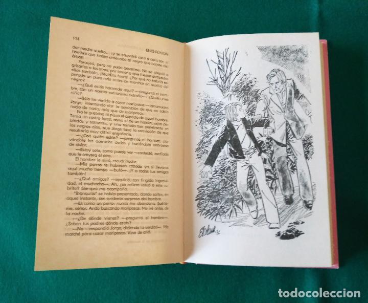 Libros antiguos: AVENTURA EN LA MONTAÑA - OBRAS DE ENID BLYTON EN COLOR Nº 5 - EDITORIAL MOLINO - AÑO 1972 - Foto 7 - 190531786