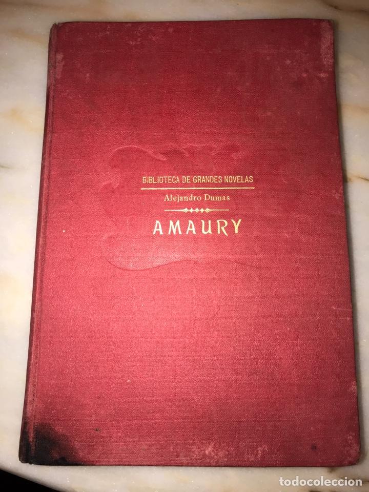 AMAURY - ALEJANDRO DUMAS 1930 (Libros Antiguos, Raros y Curiosos - Literatura Infantil y Juvenil - Novela)