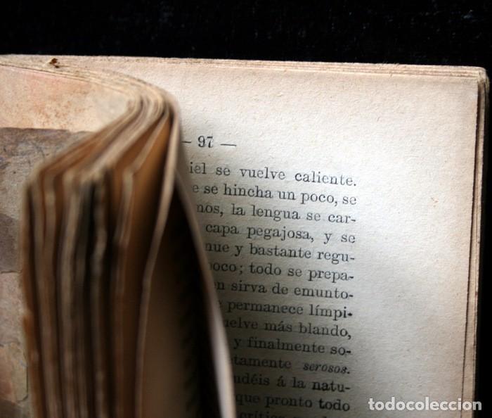 Libros antiguos: GUIA PRACTICA DEL MEDIUM CURANDERO - Sociedad Espiritista Anónima Barcelonesa - Foto 4 - 114859695
