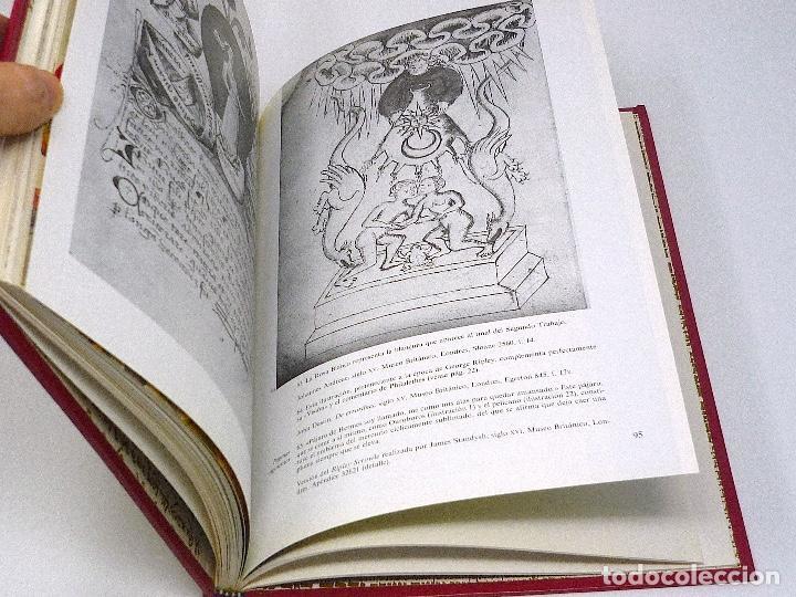 Libros antiguos: ALQUIMIA EL ARTE SECRETO - MITOS DIOSES MISTERIOS Ediciones Del Prado 1993 - Foto 4 - 129536143