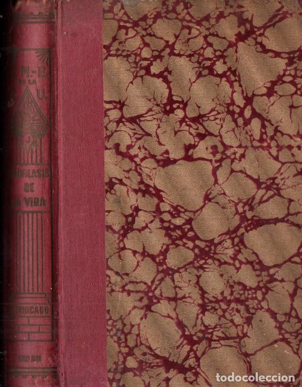 JOAQUÍN TRINCADO : PROFILAXIS DE LA VIDA - LOS 24 ANCIANOS (BUENOS AIRES, 1922) (Libros Antiguos, Raros y Curiosos - Parapsicología y Esoterismo)