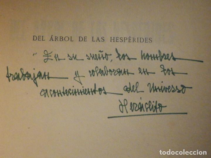 Libros antiguos: DEL ARBOL DE LAS HESPÉRIDES - MARIO ROSO DE LUNA - Año 1923 - Pueyo - Cuentos teosóficos Españoles - Foto 2 - 233322545