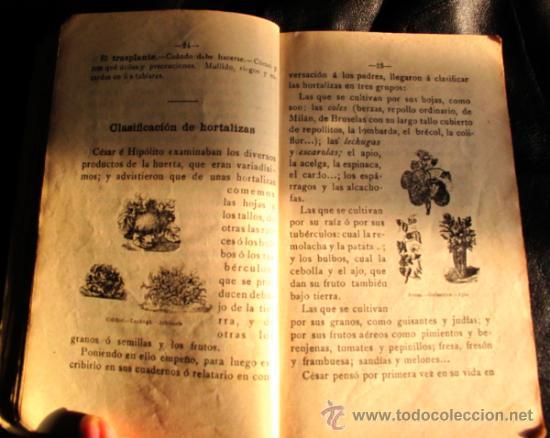 Libros antiguos: EN EL CAMPO. LECTURAS EDUCATIVAS Y ORDENADAS SOBRE AGRICULTURA RACIONAL - Foto 3 - 35148861