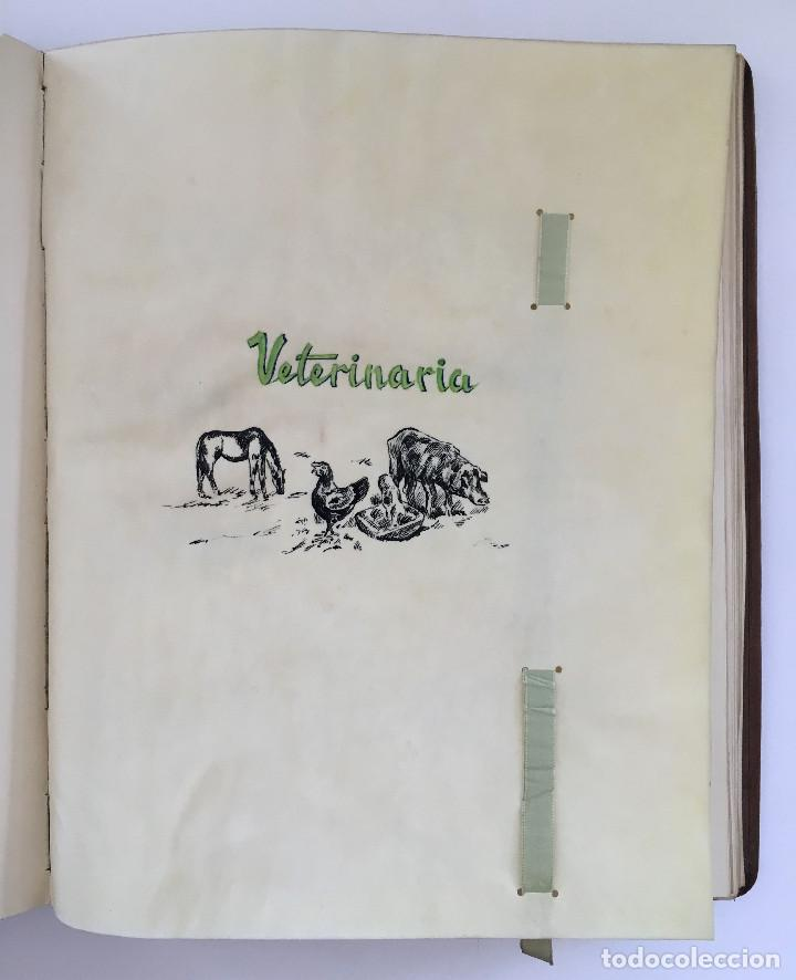 Libros antiguos: ANUARIO INSTITUTO LLORENTE. ARTE ORIGINAL 1942 CIENCIAS JACINTO MEGIAS CUERO POLICROMIA CANTO DORADO - Foto 7 - 81962932