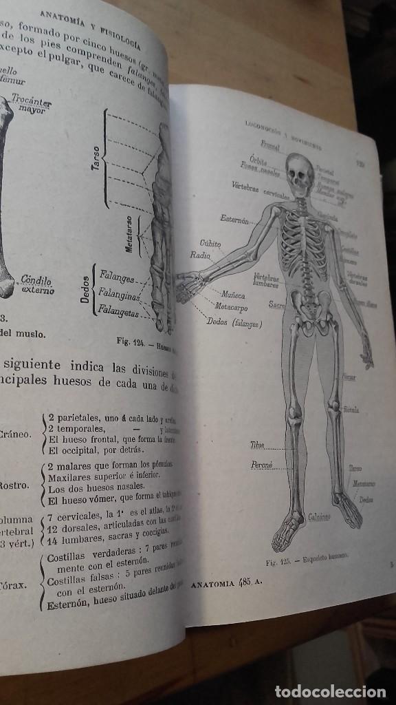 historia natural. anatomia y fisiologia del hom - Comprar Libros ...