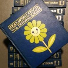 Libros antiguos: NUMULITE E0021 ENCICLOPEDIA INFANTIL MIS PRIMERAS LECTURAS CARROGGIO S/A EDICIONES 10 VOLÚMENES. Lote 146886610