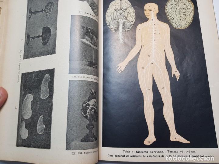 Libros antiguos: Catalogo Ilustrado de Material de Enseñanza Editorial Voluntad año 1904 muy dificil - Foto 4 - 199132133