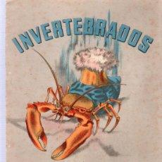 Libros antiguos: INVERTEBRADOS. CUADERNO DE PINTURA. EDITORIAL SEIX BARRAL, S.A. BARCELONA. . Lote 21815794
