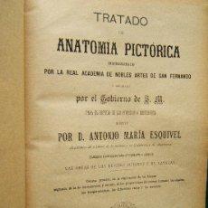 Libros antiguos: TRATADO DE ANATOMIA PICTORICA - ANTONIO MARIA ESQUIVEL - 18 PRECIOSAS LAMINAS - 1891 - 2ª EDICION . Lote 34467458
