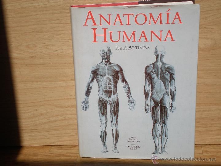 anatomia humana para artistas por andras szunyo - Comprar Libros ...
