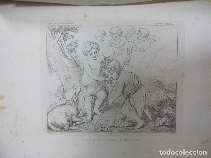 Libros antiguos: GALERIA DECUADROS ESCOGIDOS DEL REAL MUSEO DE PINTURAS DE MADRID. 1858. GRABADOS SOBRE ACERO. VER - Foto 3 - 62039572