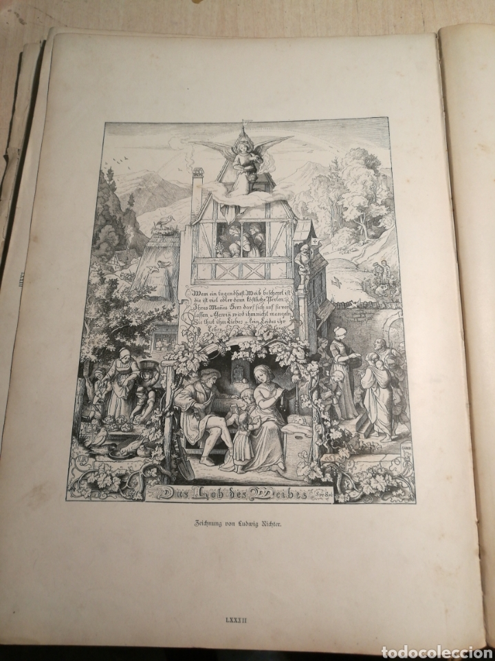 Libros antiguos: Rebajado!. Libro en aleman con numerosas litografias, 1888. - Foto 5 - 132644578