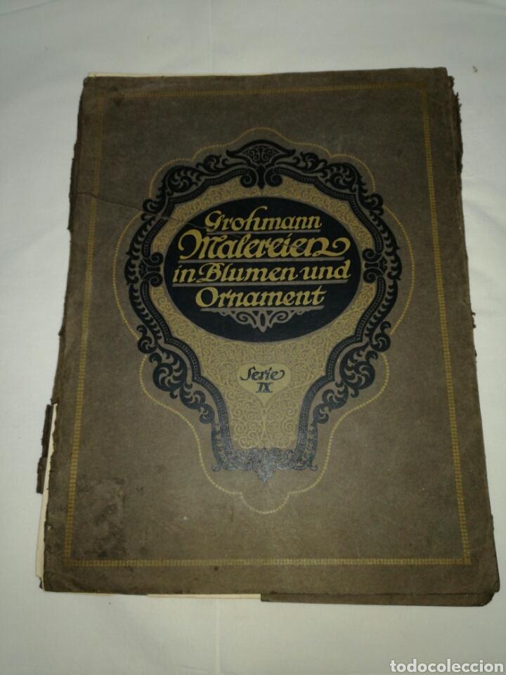 MANUAL DE DECORACIÓN GROHMANN MALERCIEN IN BLUMEN UND ORNAMENT SERIE IX (Libros Antiguos, Raros y Curiosos - Bellas artes, ocio y coleccion - Pintura)
