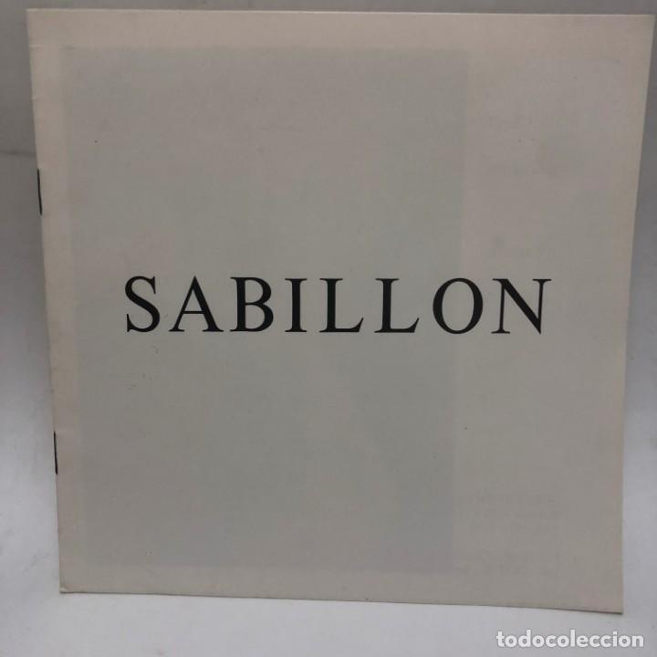CATÁLOGO ARTE - EXPOSICIÓ GREGORIO SABILLON - AÑO 1981 - SALA GAUDÍ / N-8354 (Libros Antiguos, Raros y Curiosos - Bellas artes, ocio y coleccion - Pintura)