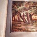 Libros antiguos: 50 LÁMINAS ENMARCABLES DE CÉLEBRES PINTORES CATALANES.LIBRERÍA CATALONIA. 1931(VER LISTA). Lote 164720634