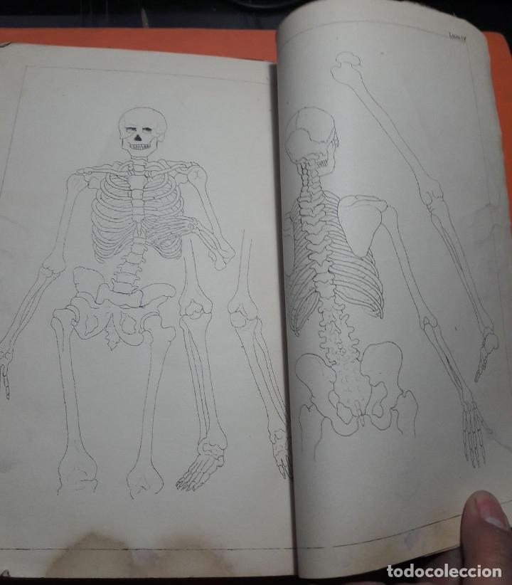 Libros antiguos: Tratado de la Pintura. Vicente Poleró. Madrid. 1886. - Foto 5 - 166602718
