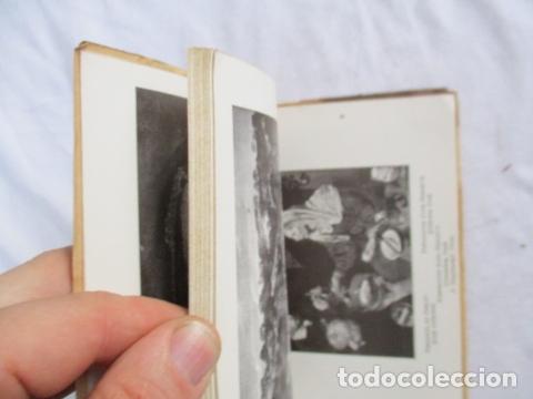 Libros antiguos: VELÁZQUEZ. Les Chefs - d' Oeuvre de Velázquez . 1925 - Foto 23 - 166956396