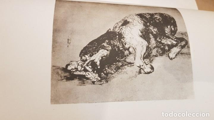 Libros antiguos: GOYA / LOS DESASTRES DE LA GUERRA / COLECCIÓN 82 AGUAFUERTES / ED - TARTESSOS / OCASIÓN ! - Foto 12 - 169757984