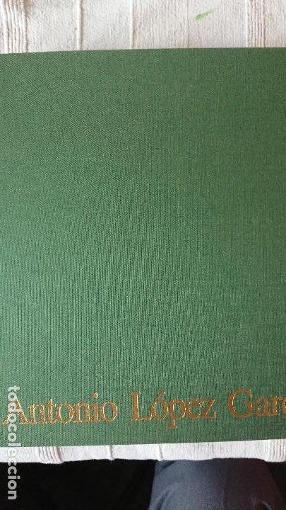 Libros antiguos: ANTONIO LÓPEZ GARCÍA - DIBUJOS PINTURAS ESCULTURAS - Michael Brenson, F. Calvo Serraller, Edward J - Foto 3 - 203822518