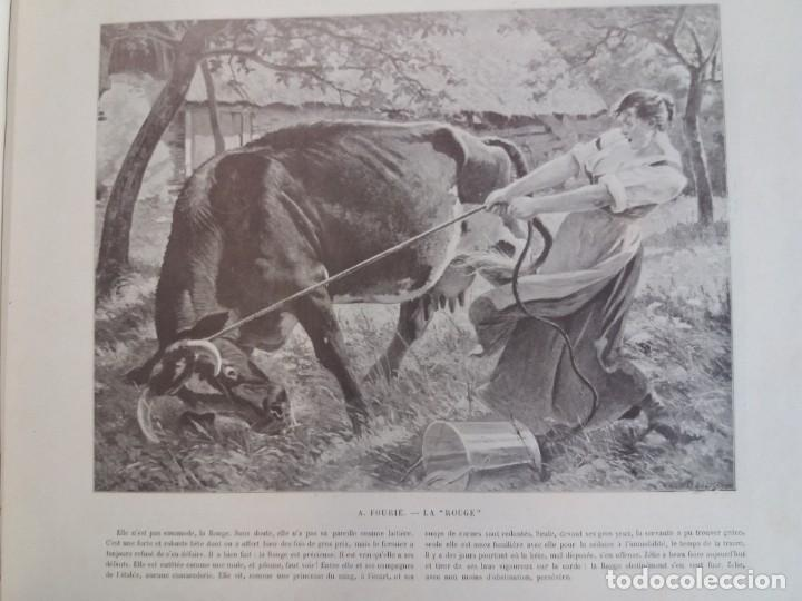 Libros antiguos: MARAVILLOSO ALBUM LE PANORAMA SALON PRECIOSOS CUADROS MAS DE 120 AÑOS GRAN FORMATO - Foto 85 - 220274280