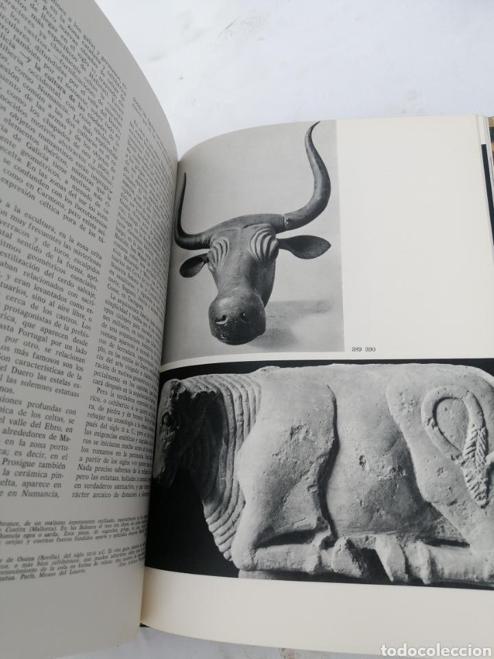 Libros antiguos: Arte del mundo antiguo mia cinotti - Foto 3 - 289545763
