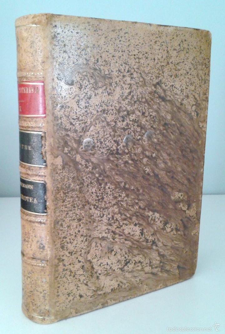 Libros antiguos: HERMANN Y DOROTEA, POEMA. POESIAS VARIAS- GOETHE. Editorial Reus. Madrid, 1924 - Foto 2 - 57746501