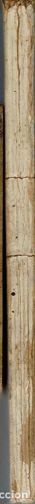 Libros antiguos: LA RAZA DEL SOL, POR FERNANDO LÓPEZ MARTÍN. AÑO 1916. (14.1) - Foto 3 - 108218715