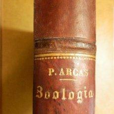 Libros antiguos: ANTIGUO LIBRO - ELEMENTOS DE ZOOLOGÍA - LAUREANO PÉREZ ARCAS - 1886 - IMPRENTA FORTANET - ILUSTRADO. Lote 116493055