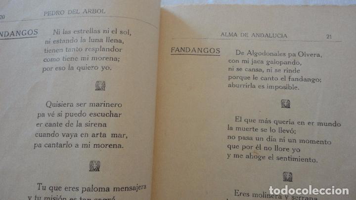 Libros antiguos: PEDRO DEL ARBOL.ALMA DE ANDALUCIA.CANTARES.SEVILLA 1933. SERRANAS.SOLEARES.FANDANGOS - Foto 10 - 127262451