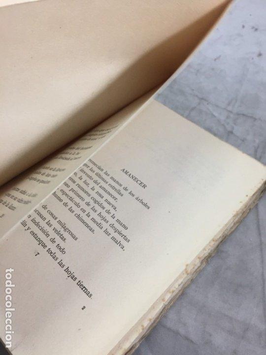 Libros antiguos: PLURAL. 1929-1934. Versos. Primera edición Dionisio RIDRUEJO JIMENEZ Segovia 1935 intonso - Foto 6 - 178965106