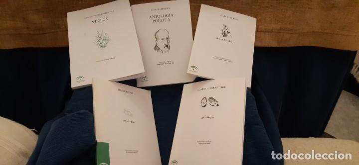 LOTE 5 LIBROS COLECCIÓN JUNTA ANDALUCÍA ANTOLOGÍAS GONGORA CERNUDA ALTOLAGUIIRE ZAMBRANO MUÑOZ ROJAS (Libros antiguos (hasta 1936), raros y curiosos - Literatura - Poesía)
