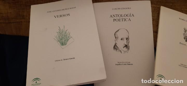 Libros antiguos: LOTE 5 LIBROS COLECCIÓN JUNTA ANDALUCÍA ANTOLOGÍAS GONGORA CERNUDA ALTOLAGUIIRE ZAMBRANO MUÑOZ ROJAS - Foto 2 - 194888847