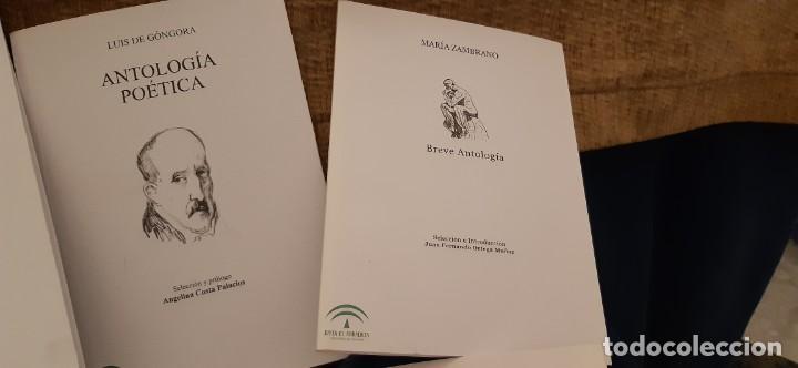 Libros antiguos: LOTE 5 LIBROS COLECCIÓN JUNTA ANDALUCÍA ANTOLOGÍAS GONGORA CERNUDA ALTOLAGUIIRE ZAMBRANO MUÑOZ ROJAS - Foto 4 - 194888847