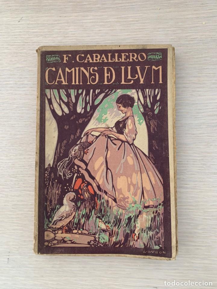LIBRO DE POESÍA VALENCIANA CAMINS DE LLUM DE F. CABALLERO, PRIMERA EDICIÓN, 1919 (Libros antiguos (hasta 1936), raros y curiosos - Literatura - Poesía)