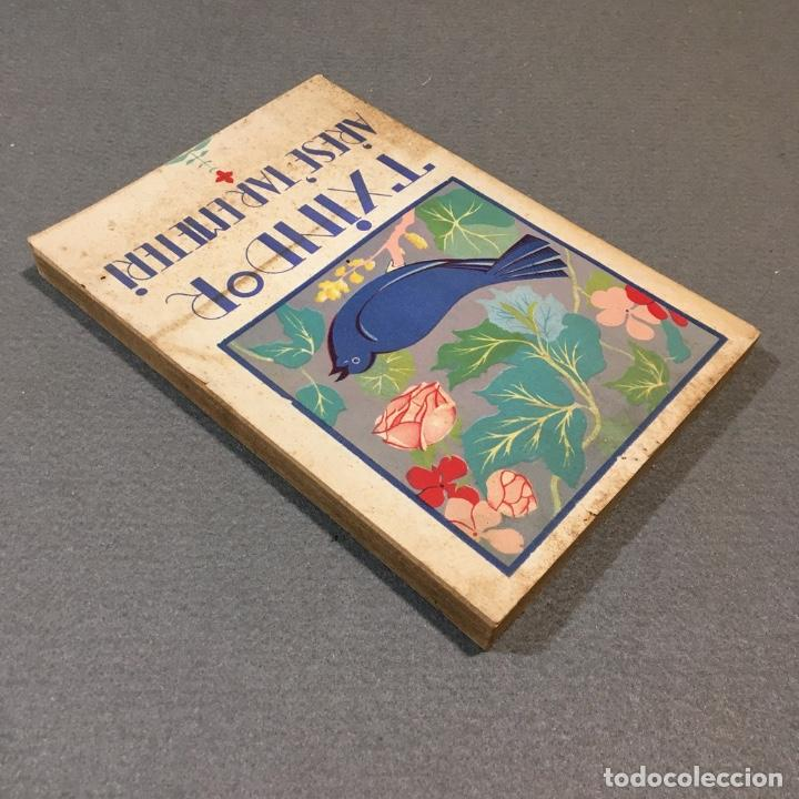 Libros antiguos: Txindor. Arese´tar Emeteri. - Foto 5 - 233224925