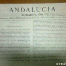 Libros antiguos: ANDALUCÍA. REVISTA DEL CENTRO ANDALUZ DE SEVILLA 1916 NÚM 4 ART. BLAS INFANTE EL JORNALERO ANDALUZ. Lote 53414642