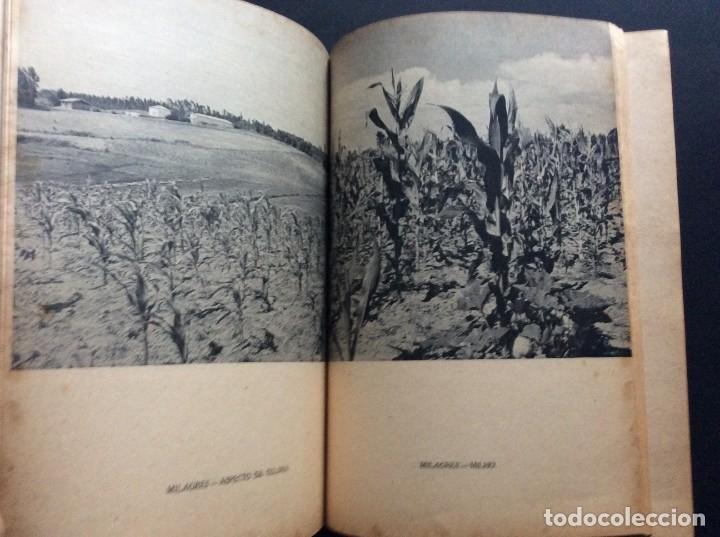 Libros antiguos: CADERNOS DO RESSURGIMENTO NACIONAL: COLONIZAÇÃO INTERNA, años 40. 1.ª edição. - Foto 4 - 173392880
